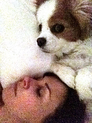 Courteney Cox Tweets Intimate Details of Life with Dog| Stars and Pets, Dogs, Courteney Cox