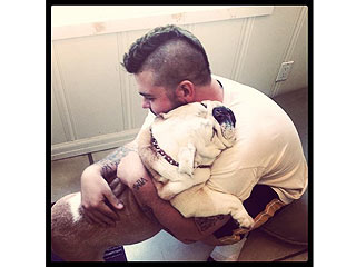 Jack Osbourne&#39;s Bulldog Lola Dies| Stars and Pets, Death, Dogs, Jack Osbourne