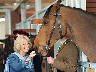PHOTO: Camilla Goes Giddy Over a Horse | Camilla Parker Bowles