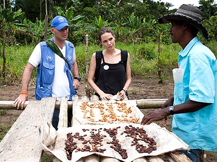 Angelina Jolie Takes Break from Galápagos for UN Work| Good Deeds, Angelina Jolie, Brad Pitt