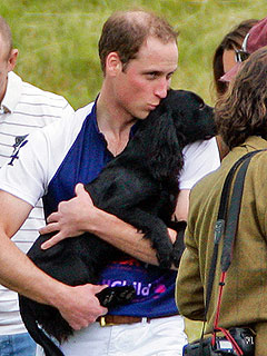 Prince William Kisses Lupo at Polo Match with Kate