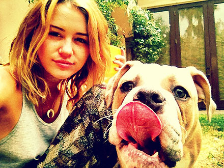 Miley Cyrus Talks Dog Ziggy in Marie Claire