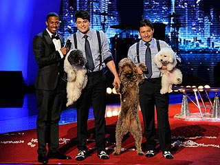 POLL: Who Should Win 'America's Got Talent'?
