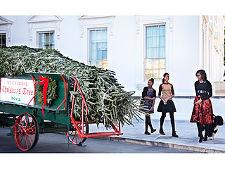 Michelle, Malia, Sasha and Bo Obama Welcome the White House Christmas Tree | Bo Obama, Malia Obama, Michelle Obama, Sasha Obama