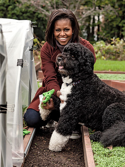 HAPPY HARVEST photo | Bo Obama, Michelle Obama