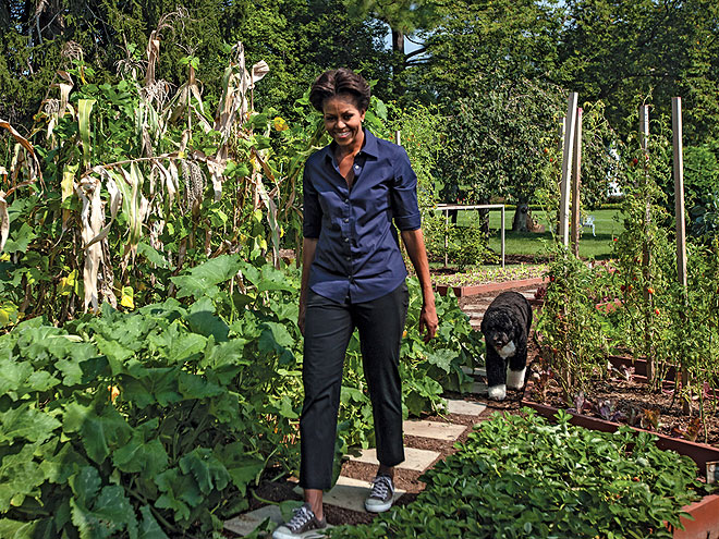 DOWN VEGGIE LANE photo | Bo Obama, Michelle Obama