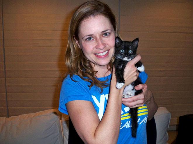 jenna kitten