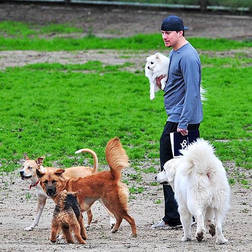 Channing Tatum's Little Sidekicks: Lulu & Meeka
