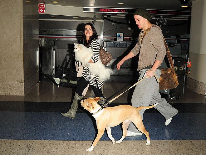 FLYING HIGH photo | Channing Tatum, Jenna Dewan