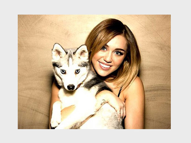 PICK-ME-UP photo | Miley Cyrus