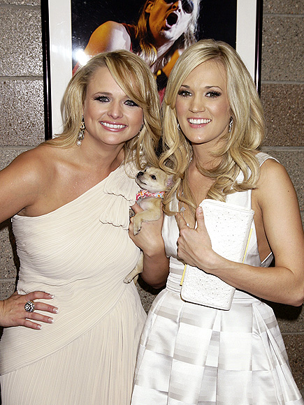 TAKING A 'PAWS' photo | Miranda Lambert