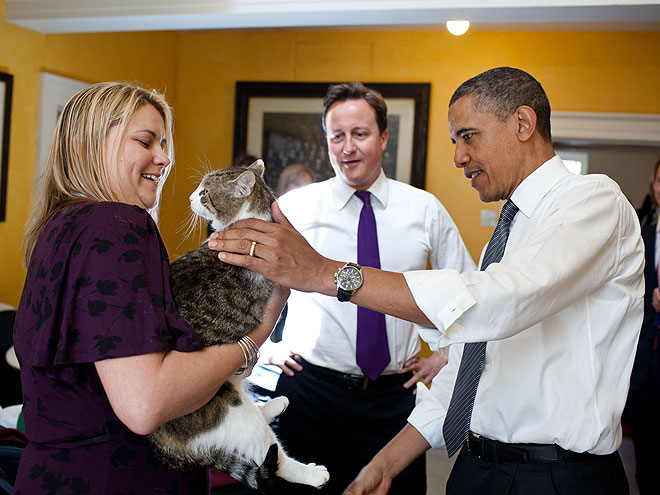 MEOW DO YOU DO?  photo | Barack Obama