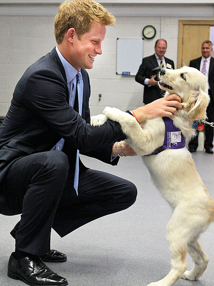 PUPPY LOVE photo | Prince Harry