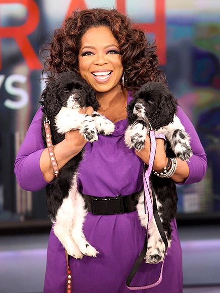 OPRAH WINFREY photo | Oprah Winfrey
