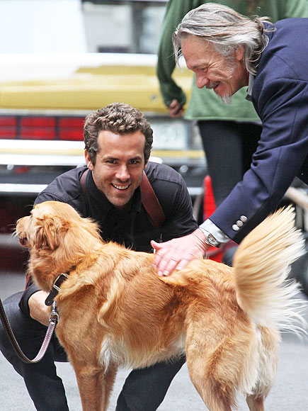 RYAN REYNOLDS photo | Ryan Reynolds