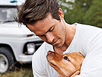 You're Welcome! Sexy Guys Who Love Their Dogs | Ryan Reynolds