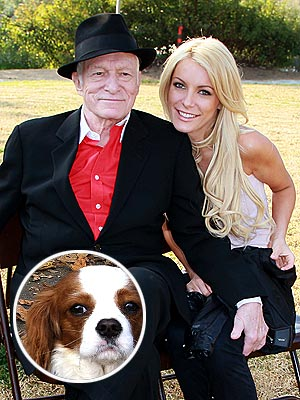 Hugh Hefner, Crystal Harris Fight over Puppy