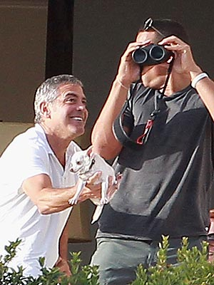 PHOTO: George Clooney Pranks A-Rod (with a Chihuahua)