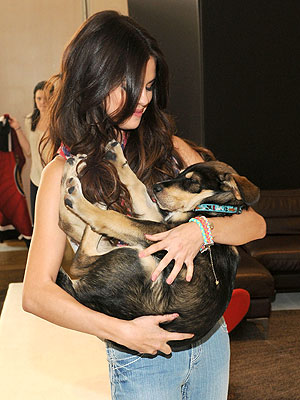 Selena Gomez's Dog Sits at the Table| Stars and Pets, Dogs, Selena Gomez