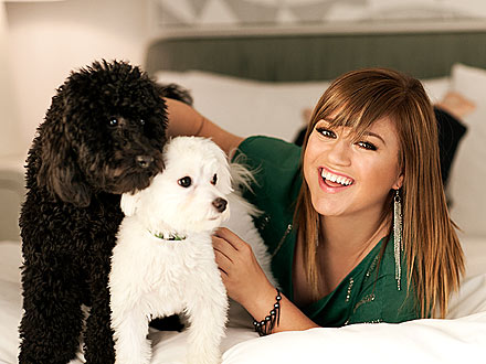 Photo of Kelly Clarkson & her Dog