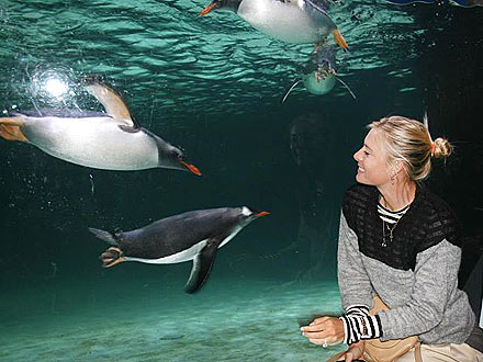 Maria Sharapova Breaks from Tennis &#8211; for Penguins!