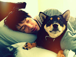Trace Cyrus & Brenda Song Love Nesting with Their Dogs| Stars and Pets, Dogs, Brenda Song