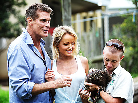 David Hasselhoff & Hayley Roberts Spend a Romantic Day at the Zoo| Stars and Pets, Zoo Animals, David Hasselhoff