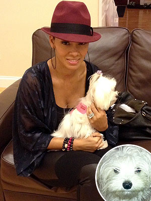 Basketball Wives Evelyn Lozada Talks Dog Pucci