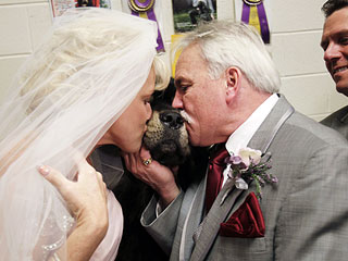 The Water Bowl: Couple Gets Married at Westminster!