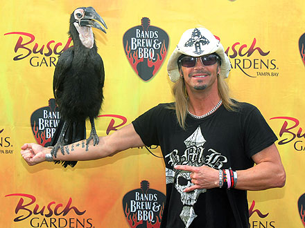 Cuddle Alert! Bret Michaels Hugs a Sloth| Stars and Pets, Zoo Animals, Bret Michaels