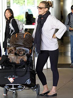 Molly Sims Won't Put Dogs Aside for Baby | Molly Sims
