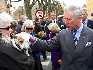Charles & Camilla Have a Dog Day Afternoon | Prince Charles