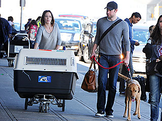 Emily Blunt&#39;s Heavy Lifting: Labrador Finn&#39;s Dog Carrier | Emily Blunt, John Krasinski