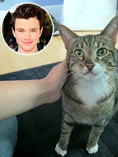 Chris Colfer&#39;s 22-Lb. Cat Thinks He&#39;s &#39;Very, Very Small&#39; | Chris Colfer