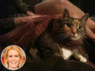 Former Real Housewife Alex McCord's Cat Dies | Alex McCord