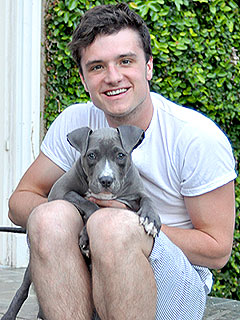 Peeta&#39;s Got a Pet: Josh Hutcherson Adopts Rescue Puppy! | Josh Hutcherson