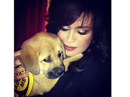 Marie Osmond Gets New Puppy: Photo