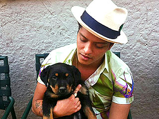 Bruno Mars Gets His First Dog | Bruno Mars
