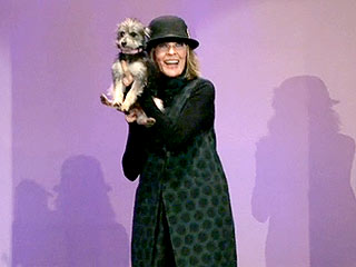 Diane Keaton Asks Tonight Show Audience to Adopt Dog | Diane Keaton