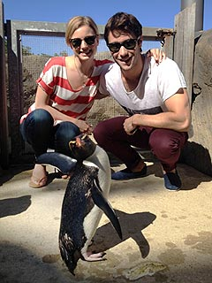 Say Cheese! Emily VanCamp Poses with Penguin | Emily VanCamp