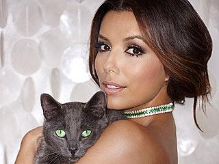 Picture Purr-fect! Eva Longoria Cuddles a Cat in New Campaign | Eva Longoria