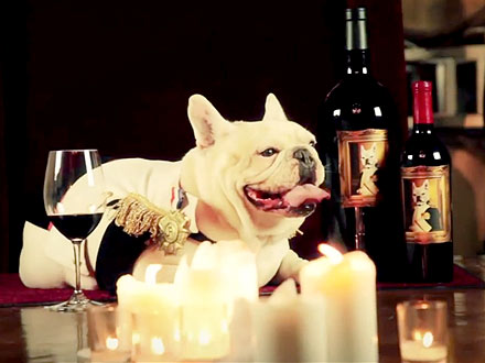 Frenchie Winery Caters to Dogs