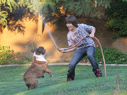 Kickin' It's Leo Howard: My Bulldog Skateboards Better Than I Do| Stars and Pets, Dogs, Talented Pets, Leo Howard
