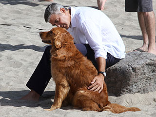 PHOTOS: George Clooney (and an Adorable Dog) on the Beach | George Clooney