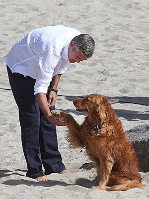 George Clooney Goes Barefoot on the Beach with an Adorable Dog| Stars and Pets, Dogs, Commercials, George Clooney