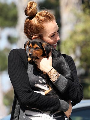Miley Cyrus with Dog Happy: Photos