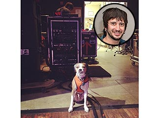 The All-American Rejects' Fifth Member? Guitarist Nick Wheeler's Dog
