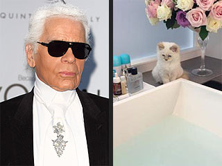 Karl Lagerfeld: Choupette is the 'Most Famous Cat in the World'