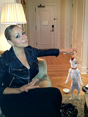 Mariah Carey Pampers Her Pup with Strawberries