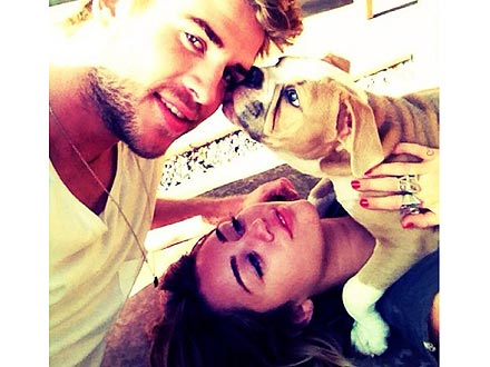 Miley Cyrus, Liam Hemsworth Picture with Dog Ziggy